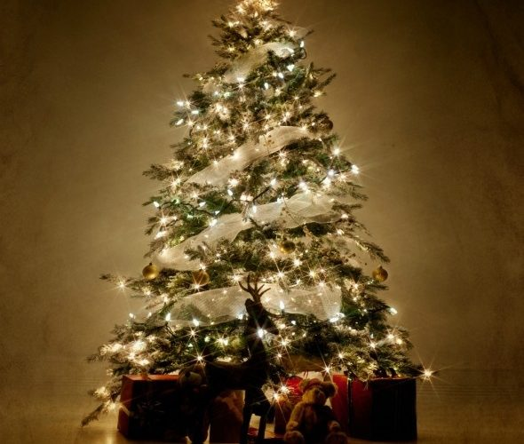 Natale da Tessarolo